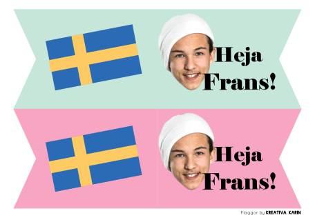Eurovisionvimplar_Frans