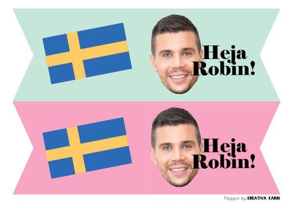 Eurovisionvimplar_ROBIN